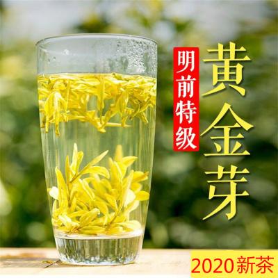2020明前特级新茶 正宗原产地安吉白茶黄金芽茶叶250g珍稀白茶
