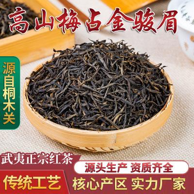 【桐木关梅占金骏眉】武夷红茶500g红茶 高端金骏眉茶叶