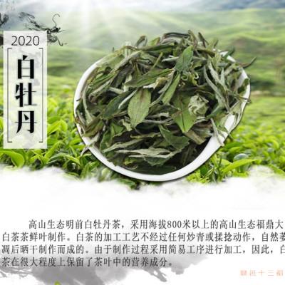 2020春季新茶高山正宗福鼎白茶大白茶白牡丹茶兰花香散装500克
