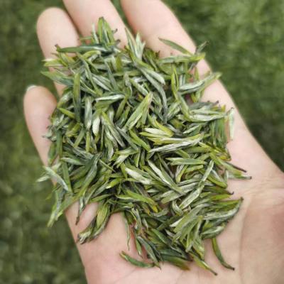 100g永川秀芽特级2021新茶叶重庆特产绿茶罐装高山毛尖浓香型雨花