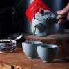 正宗武夷山正山小种红茶浓香型茶叶新茶罐装500g