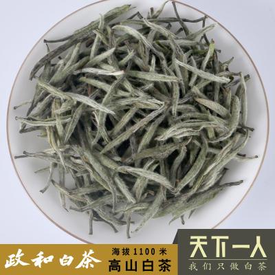 高山头春白毫银针特级80克散茶礼盒装2019年正宗政和白茶传统工艺