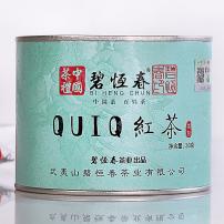 碧恒春茶业QUIQ红茶正山小种武夷山浓香原叶茶三角袋泡茶包可冷泡