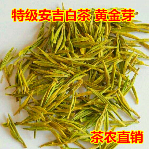 2021年新茶绿茶 特级安吉白茶黄金芽 黄金叶黄金白茶罐装250g茶叶