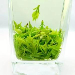 250克特级嫩芽正品贵州余庆2020茶叶野生发酵峨眉山青山绿水小叶苦丁