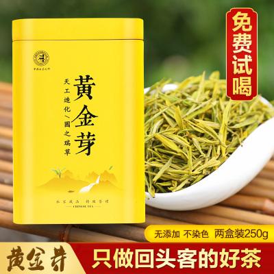 安吉白茶黄金芽雨前特级2019春茶新茶罐装礼盒正宗高档珍稀绿茶叶