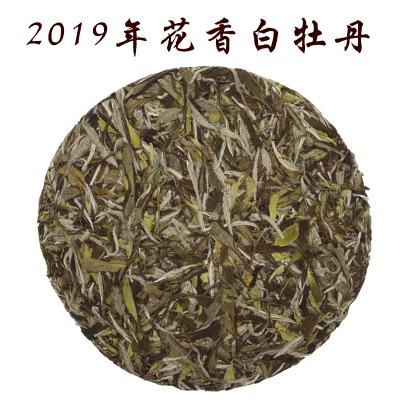 福建福鼎白茶2019年头春茶花香高山白牡丹王饼茶350克新茶叶