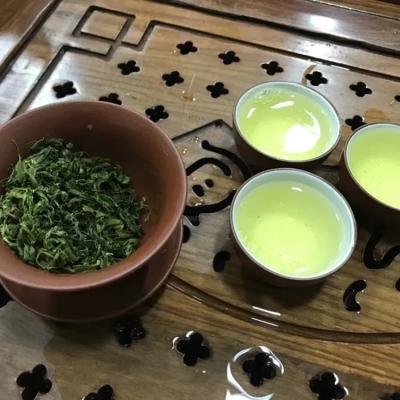 炒茶芯绿茶1斤揭阳炒茶清香回甘高山头春茶生态茶天然养生花香有机茶消食