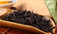 一杯武夷茶中苏醒的中国史