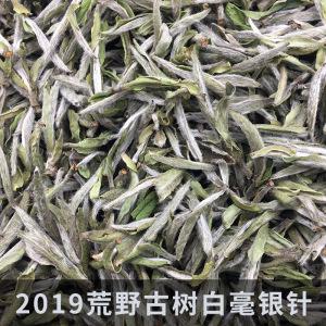2019荒野古树福鼎白茶白毫银针散茶磻溪高山日晒白茶叶