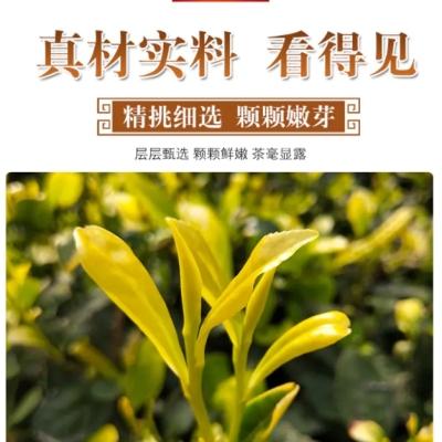 正宗浙江安吉【黄金芽 明前50g】采摘一芽一叶或二叶