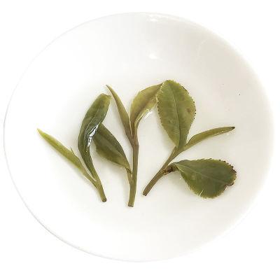 崂山绿茶2020年新茶春茶大田茶头采豆香浓郁崂山茶500克青岛特产
