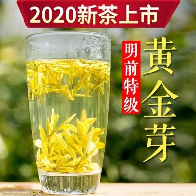 安吉白茶黄金芽明前特级2020年新茶叶黄金白茶珍稀黄金叶100g