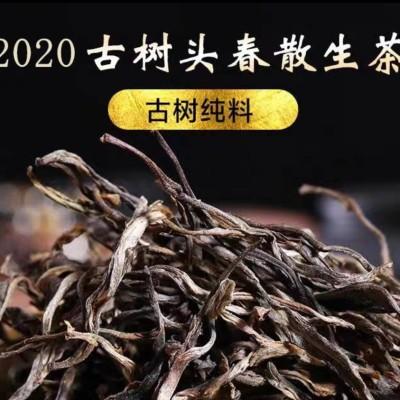 普洱茶生茶散茶冰岛散生茶2020古树头春特级散装生普口粮茶500g