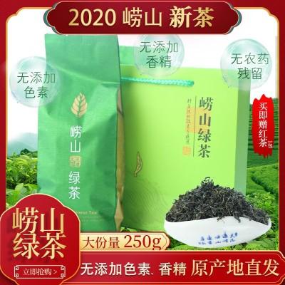 崂山绿茶 2020年新茶精品青岛特产散装250克青岛特产豆香味