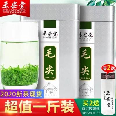 【买一送一】毛尖绿茶2020年新茶叶信阳原产毛尖共500g