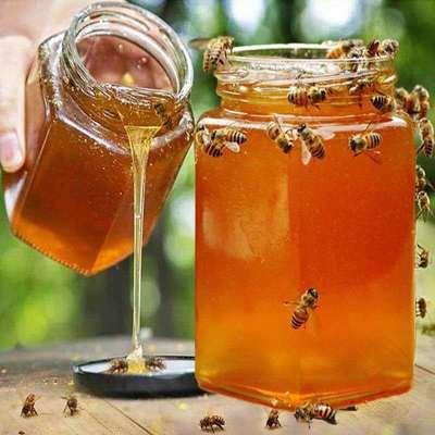 【买一斤发二斤】天然野生正宗土蜂蜜 500克农家自产自销纯真百花蜜成熟