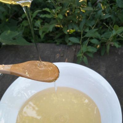假一罚十 1000g槐花蜂蜜天然农家自产野生土蜂蜜原蜜槐花蜜玻璃瓶
