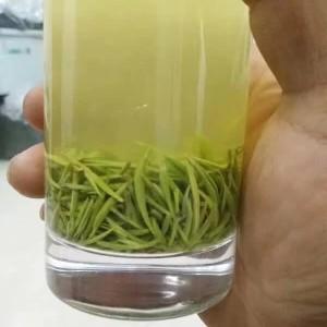 信阳毛尖2020新茶明前特级嫩芽高山绿茶茶叶自产自销头采250g散装