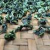 浓香铁观音铁观音乌龙茶2020新茶兰花香高山茶茶叶礼盒装500g