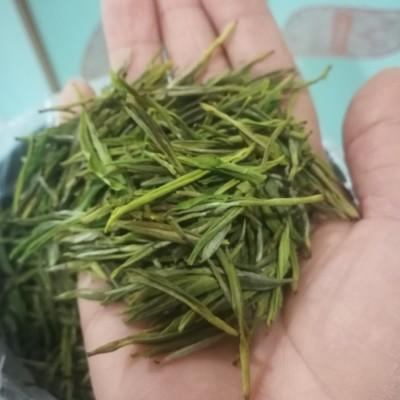 正宗原产地特级安吉白茶2020年明前新芽500克