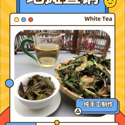 1000克,2020年绿野仙踪寿眉白茶