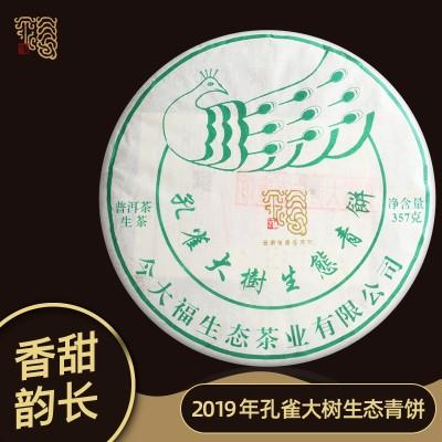 今大福 2019春孔雀大树生态青饼普洱茶生茶茶叶357克茶饼送礼收藏夹