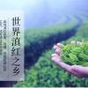 云南凤庆滇红茶(大金针250克)2020年春茶采用云南大叶种鲜叶