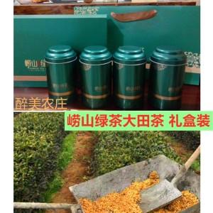 2021崂山绿茶大田头采摘手工碧螺春正宗崂山茶浓香型绿茶500礼盒装