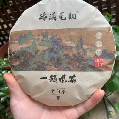 福鼎白茶2013年磻溪老白茶贡眉寿眉饼茶品藏皆宜送礼高档礼品