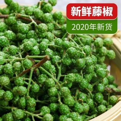 2020新鲜青花椒藤椒麻椒保鲜花椒特麻特香四川特产重庆九叶青100克