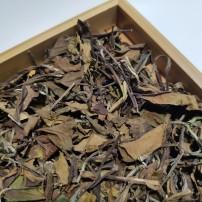 茶叶景迈山生茶19年头春景迈古树白茶珍藏散茶一公斤  普洱茶