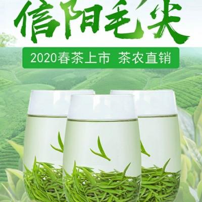 [限购两件]包邮信阳毛尖明前茶自产自销高山嫩芽云雾绿茶50克