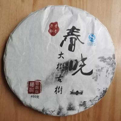 春晓——2012年班卡放牛场生态乔木古树明前春茶400克生饼
