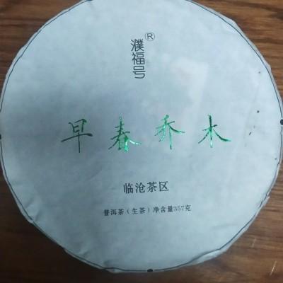 普洱茶生茶七子饼357克早春乔木茶云南特产大叶茶