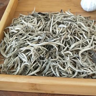 云南大叶种古树白茶芽500克散茶白亳清香型送筒