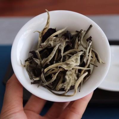 云南古树月光白茶生普洱茶特级月光美人老白茶浓香型散装250g茶叶