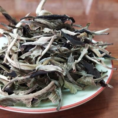 云南老树月光白生茶一芽一叶散茶500克盒白茶普洱景迈山香甜水柔