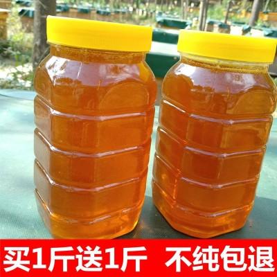 深山野生土蜂蜜正宗枣花蜜天然百花蜜洋槐蜜纯农家自产自销真蜂蜜