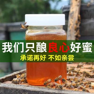 蜂蜜纯正天然野生深山土蜂蜜洋槐花蜜枣花蜜百花蜜结晶蜜自产自销