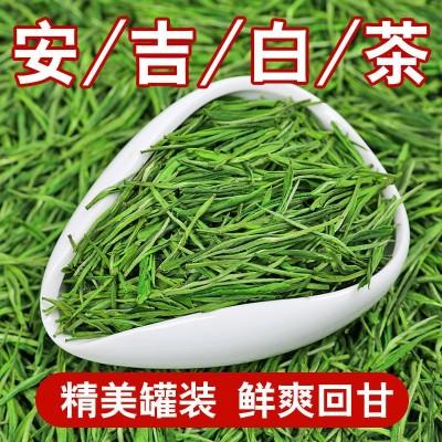 明前新茶安吉白茶绿茶珍稀白茶安吉白茶250g 包邮