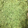 2021新茶上市狮峰杭州老茶树龙井茶叶正宗特级明前250g春茶绿茶
