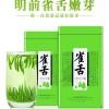 [全嫩芽2021新茶]绿茶茶叶雀舌新茶明前毛尖特级绿茶竹叶炒青250克