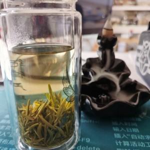 信阳毛尖茶新茶春茶厂家直销