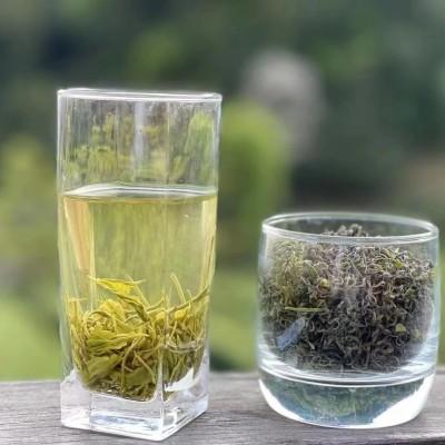 农家春茶绿茶500g大份量装罐装