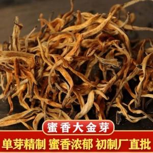 批发2021年早春云南滇红茶 蜜香型大金芽 单芽金丝500克散装红茶
