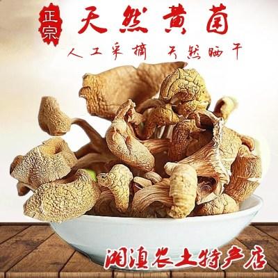 天然黄菌农家阳光晒干500g黄蘑菇煲汤食用菌黄菇包邮