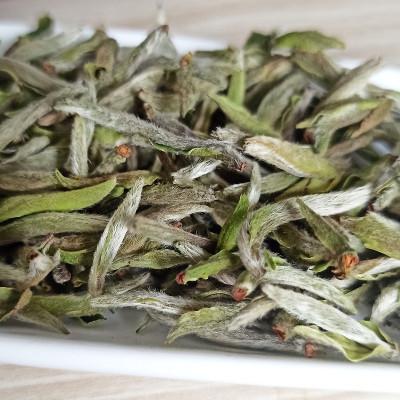 2021新茶福鼎特级头采牡丹王白茶明前花香白牡丹春茶叶散茶250克