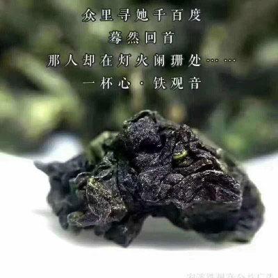 安溪铁观音新茶特级铁观音乌龙茶礼盒装250g产于帝龙茶厂