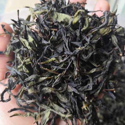 乌龙茶 诏安富硒高山茶 八仙茶土山茶黄旦茶惠来潮汕人喜爱喝的茶500克